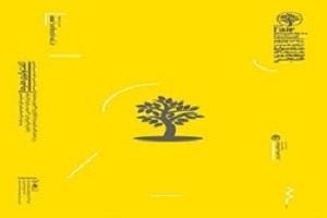 جشنواره ای که کرونا ناتمامش گذاشت + عکس