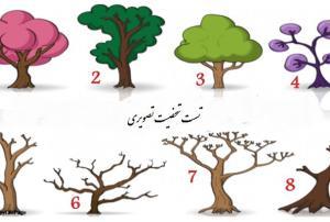 تست شخصیت شناسی با انتخاب یکی از این 9 درخت! عکس