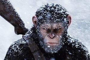 میمون هایی که به رهبری سزار می خواهند بر زمین چیره شوند ! + عکس