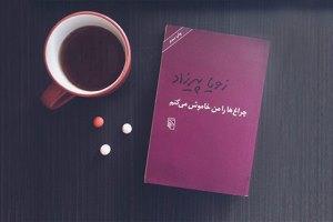 خانمهای نویسنده؛ فرمانروایان تجدید چاپ در ایران