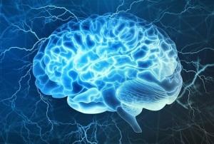 صحبت کردن مغز و عضلات با یکدیگر