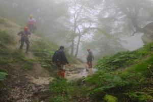جنگل کردکوی به دوربین مجهز می شود
