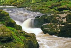 رودخانه زیبایی که به شکل مرموزی افراد را به کشتن می دهد! عکس