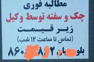 تبلیغ شَرخری در کف خیابانهای پایتخت!+ عکس